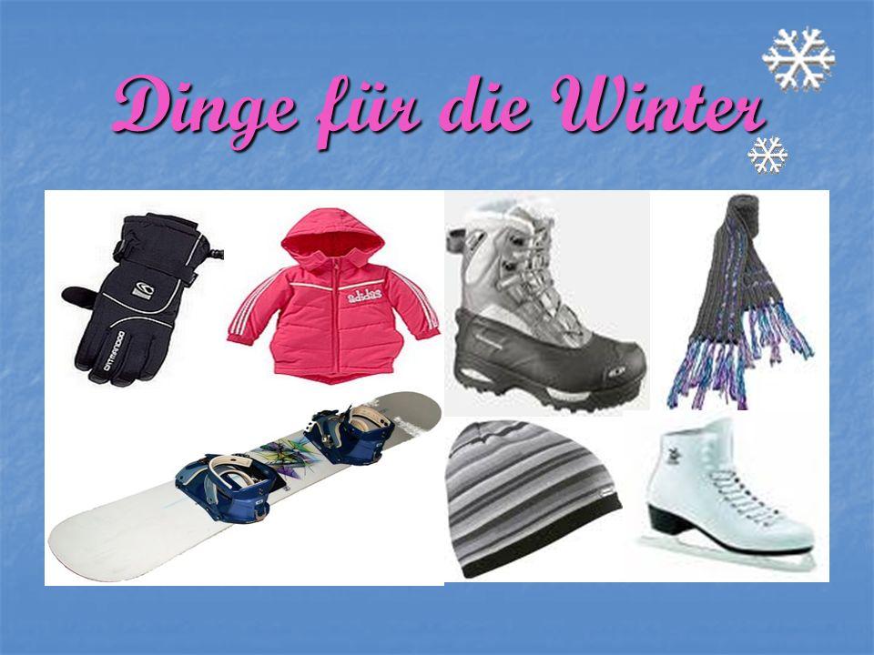 Dinge für die Winter