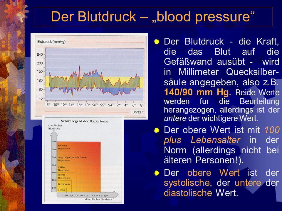 """Der Blutdruck – """"blood pressure"""
