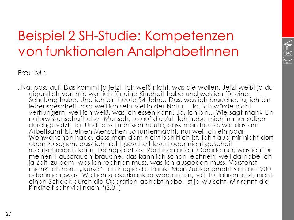 Beispiel 2 SH-Studie: Kompetenzen von funktionalen AnalphabetInnen