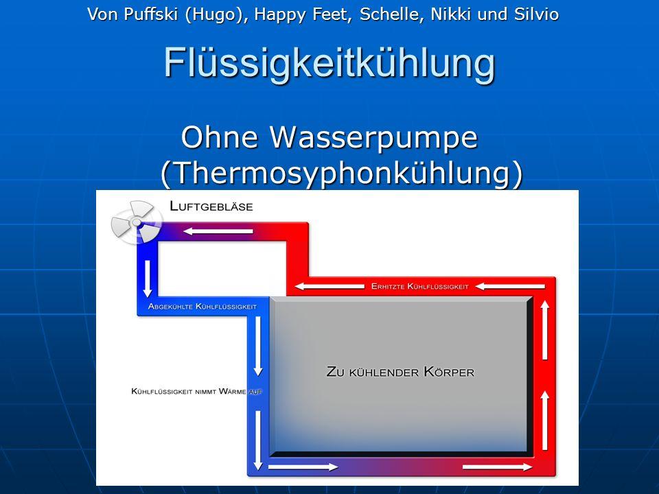 Ohne Wasserpumpe (Thermosyphonkühlung)