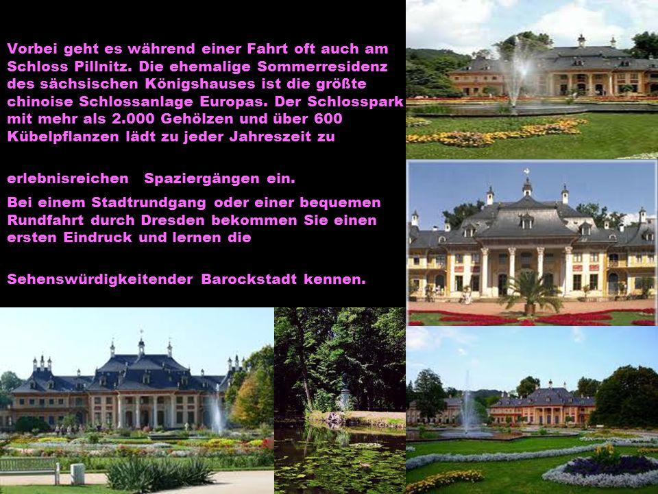 Vorbei geht es während einer Fahrt oft auch am Schloss Pillnitz