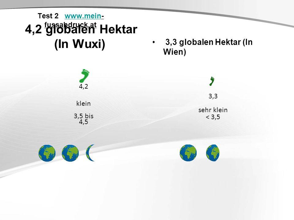 Test 2 www.mein-fussabdruck.at