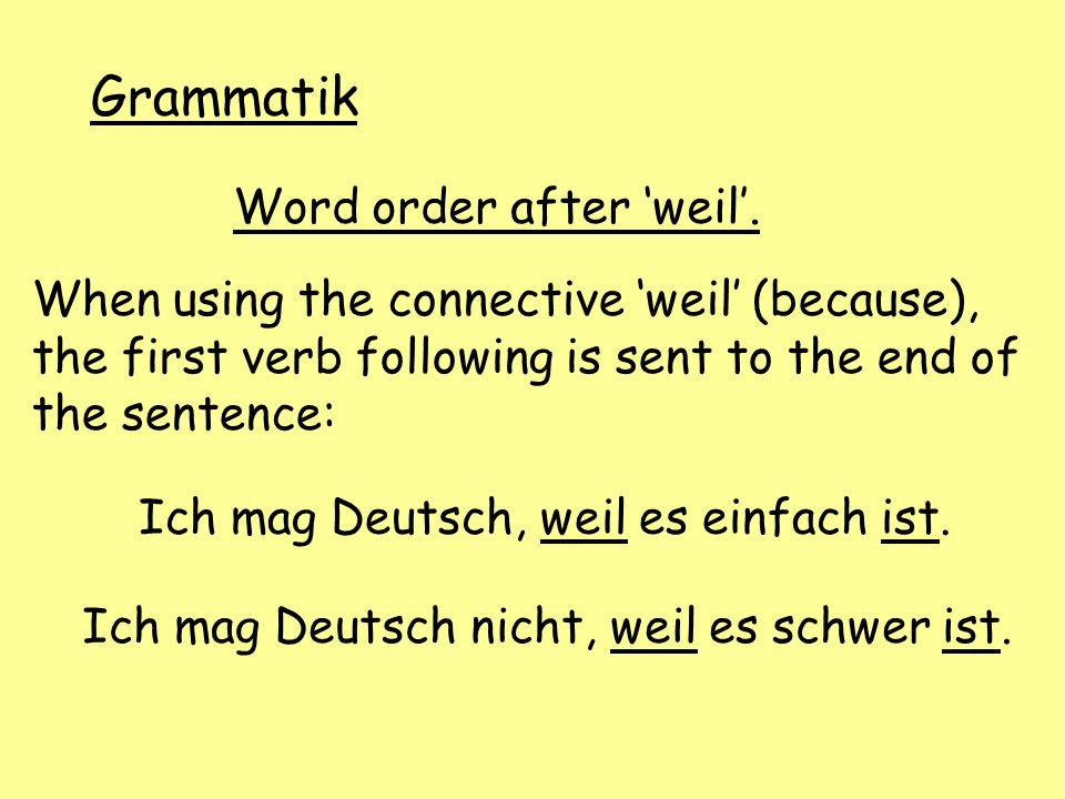 Grammatik Word order after 'weil'.