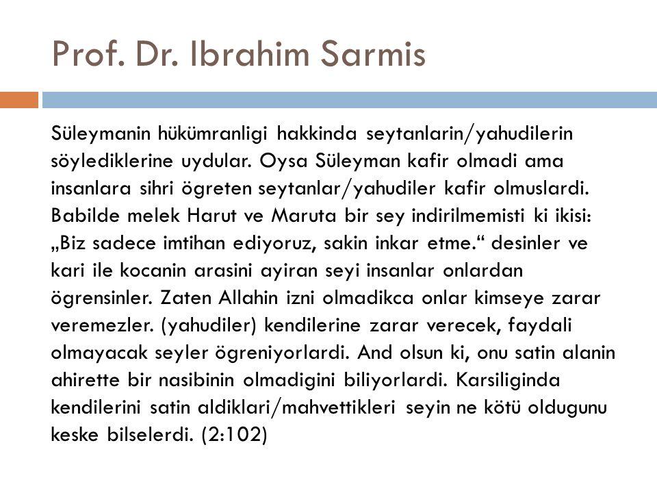 Prof. Dr. Ibrahim Sarmis
