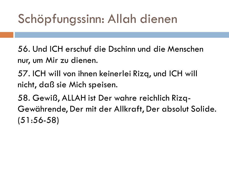 Schöpfungssinn: Allah dienen