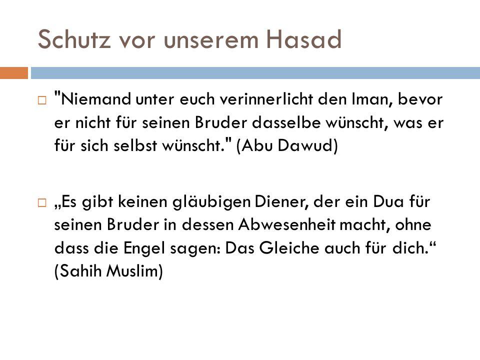 Schutz vor unserem Hasad