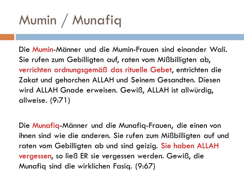 Mumin / Munafiq