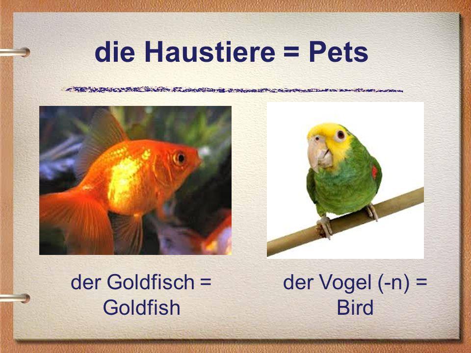 der Goldfisch = Goldfish
