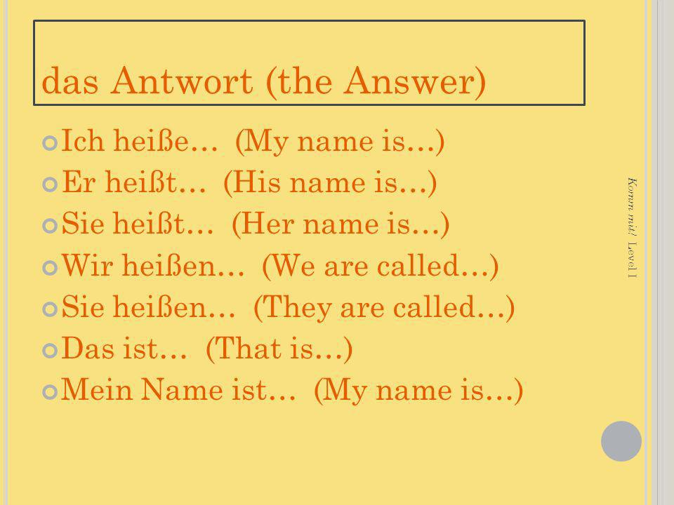 das Antwort (the Answer)