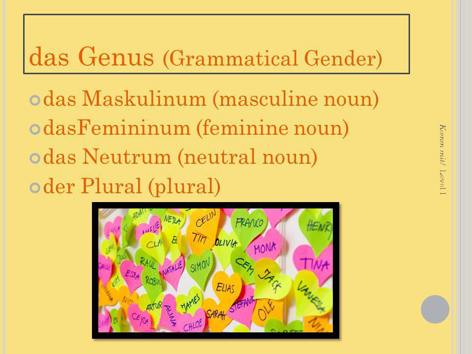 das Genus (Grammatical Gender)
