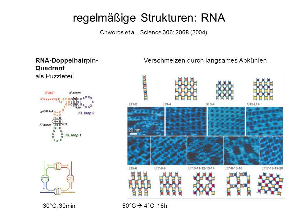 regelmäßige Strukturen: RNA