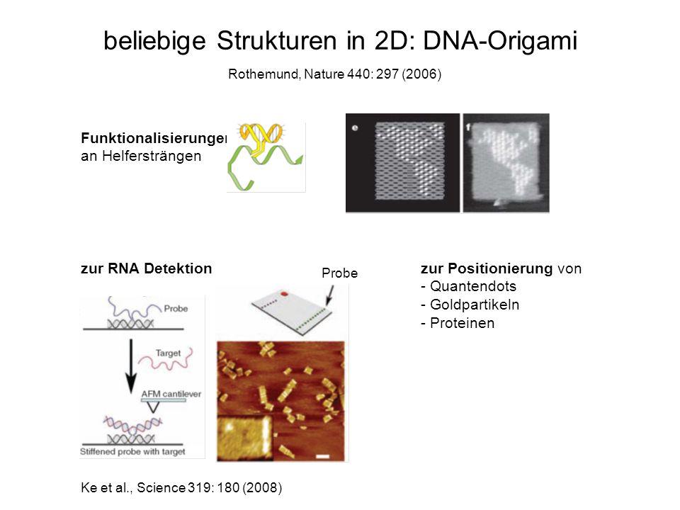 beliebige Strukturen in 2D: DNA-Origami