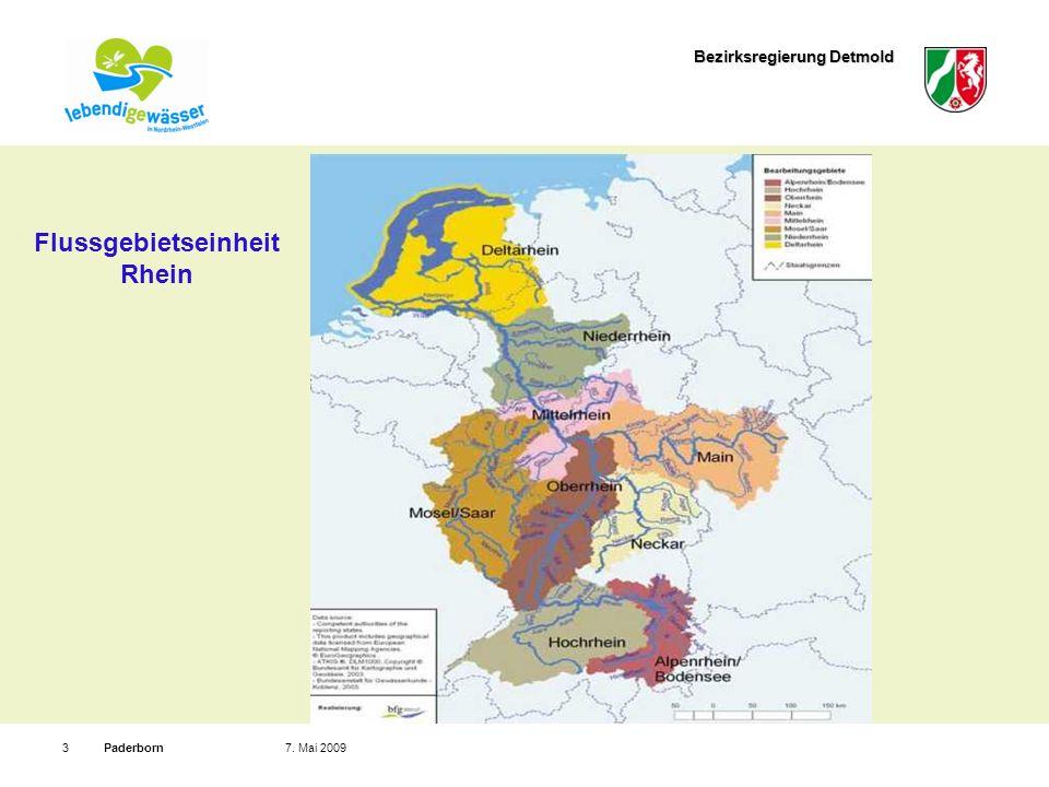 Flussgebietseinheit Rhein