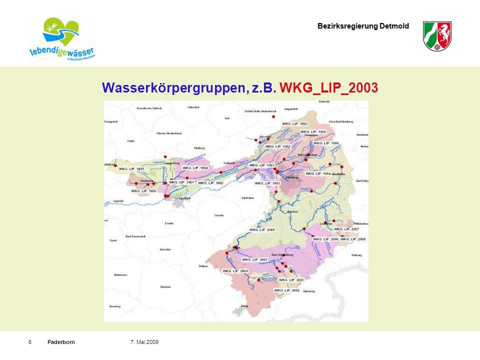 Wasserkörpergruppen, z.B. WKG_LIP_2003