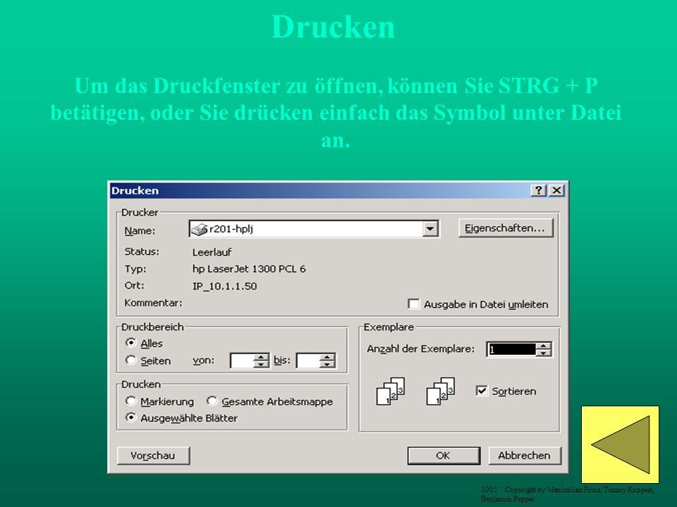 Drucken Um das Druckfenster zu öffnen, können Sie STRG + P betätigen, oder Sie drücken einfach das Symbol unter Datei an.
