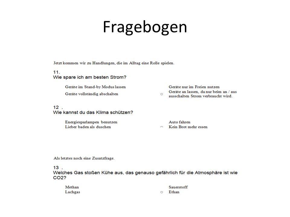Fragebogen 11