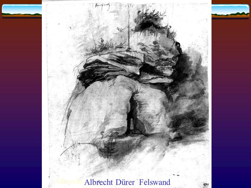 Albrecht Albrecht Dürer Felswand