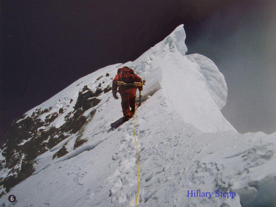 Hillary Stepp Hillary Step