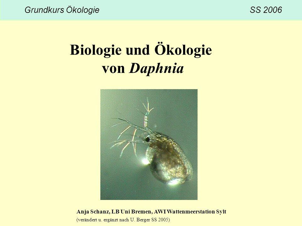 Biologie und Ökologie von Daphnia