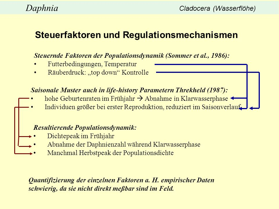 Steuerfaktoren und Regulationsmechanismen