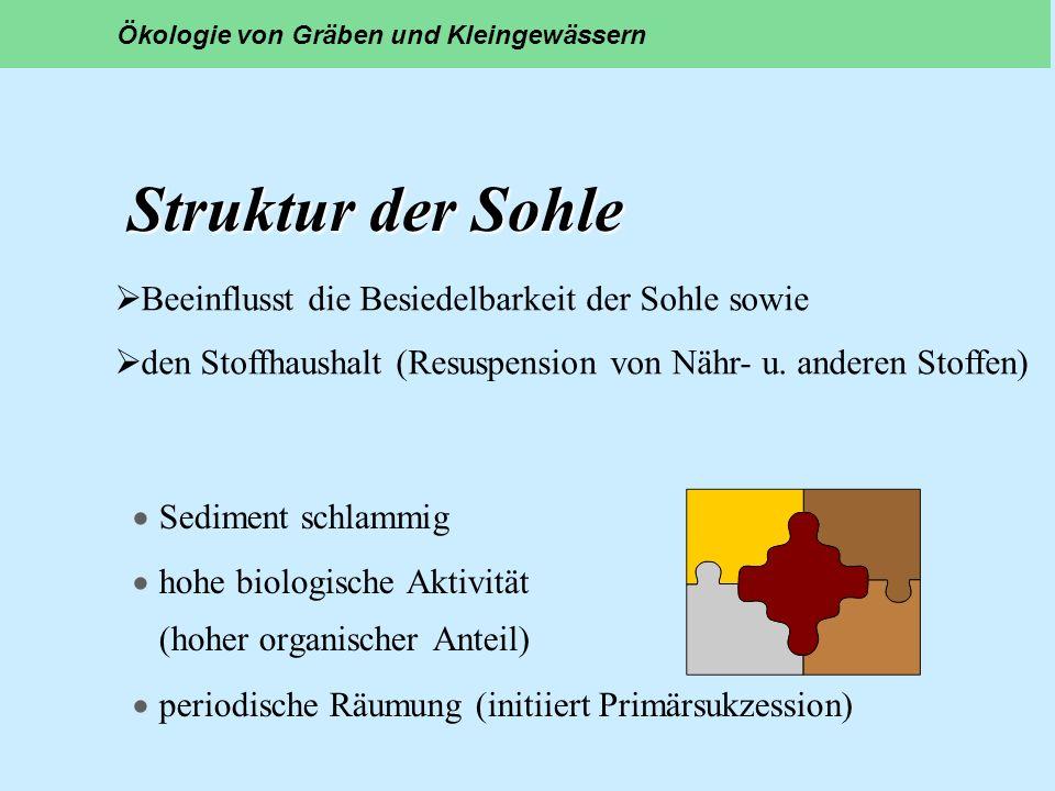 Struktur der Sohle Beeinflusst die Besiedelbarkeit der Sohle sowie