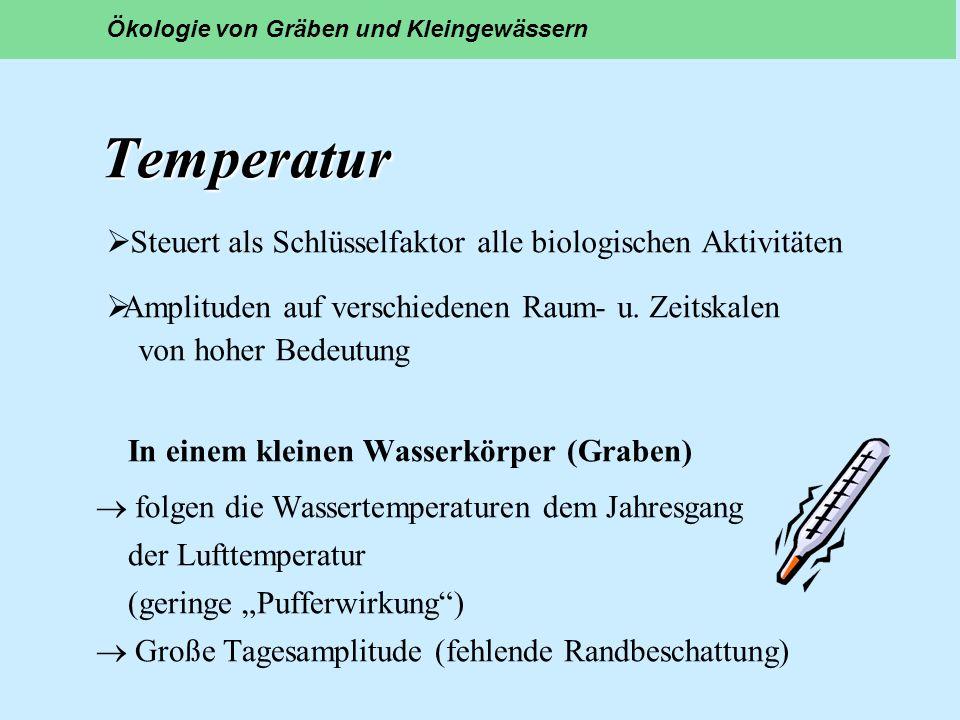 Temperatur Steuert als Schlüsselfaktor alle biologischen Aktivitäten