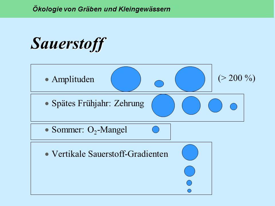 Sauerstoff Amplituden (> 200 %) Spätes Frühjahr: Zehrung