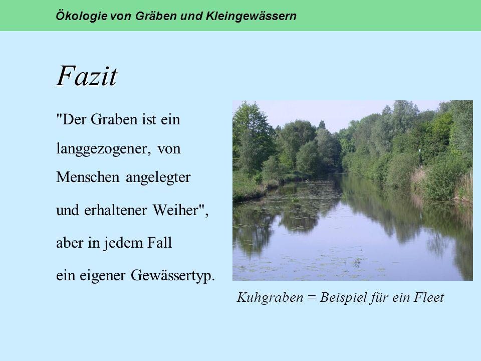 Kuhgraben = Beispiel für ein Fleet