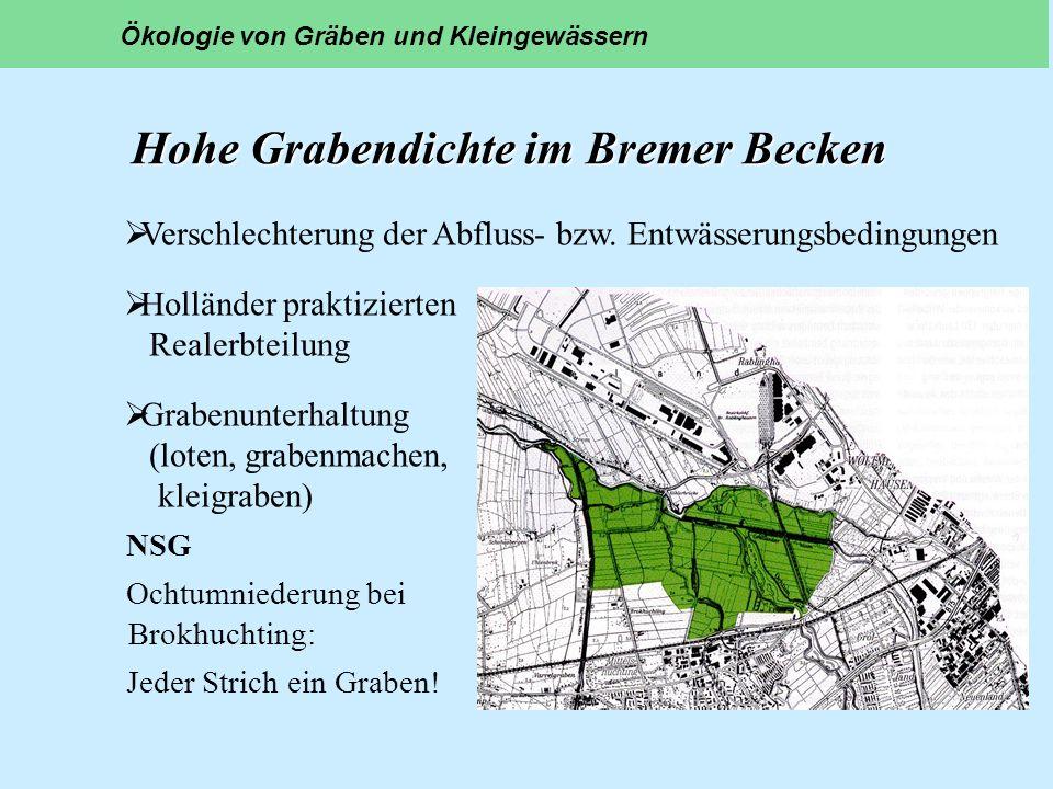 Hohe Grabendichte im Bremer Becken