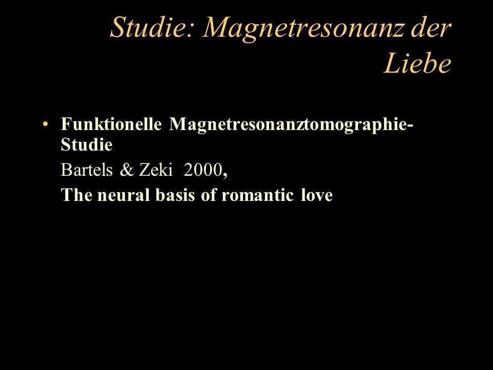 Studie: Magnetresonanz der Liebe