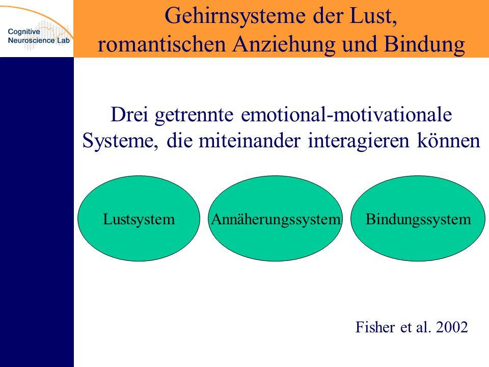 Gehirnsysteme der Lust, romantischen Anziehung und Bindung