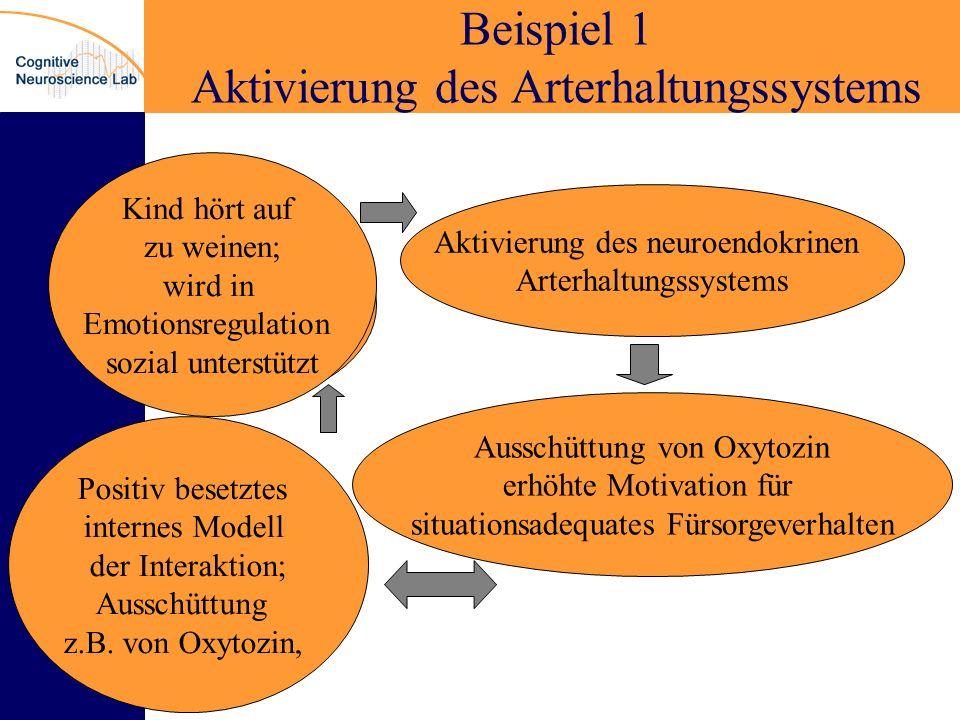 Beispiel 1 Aktivierung des Arterhaltungssystems