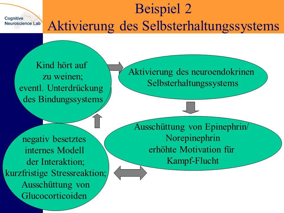 Beispiel 2 Aktivierung des Selbsterhaltungssystems