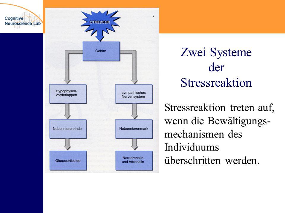 Zwei Systeme der Stressreaktion