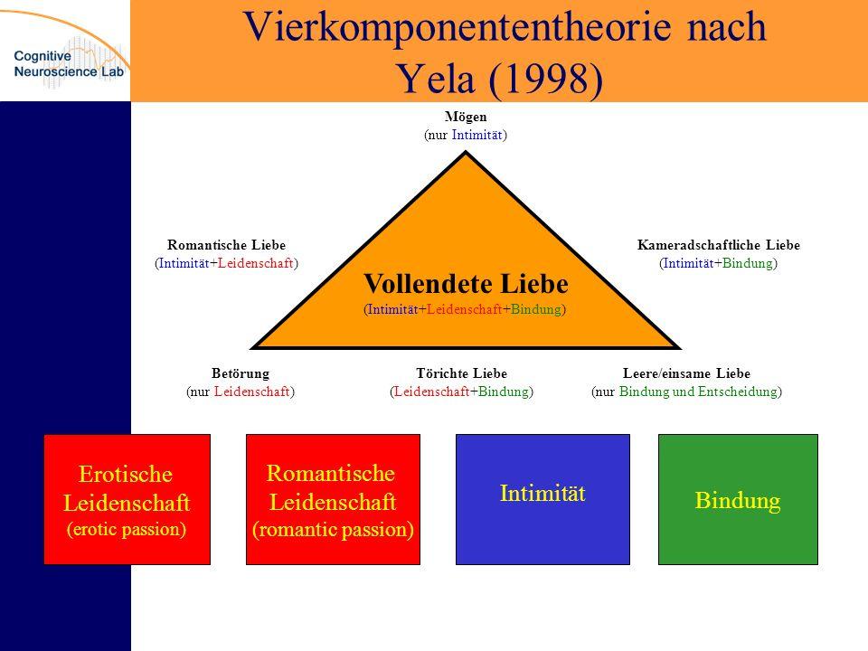 Vierkomponententheorie nach Yela (1998)