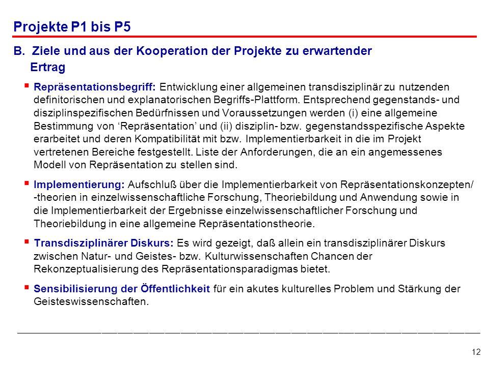Projekte P1 bis P5B. Ziele und aus der Kooperation der Projekte zu erwartender. Ertrag.