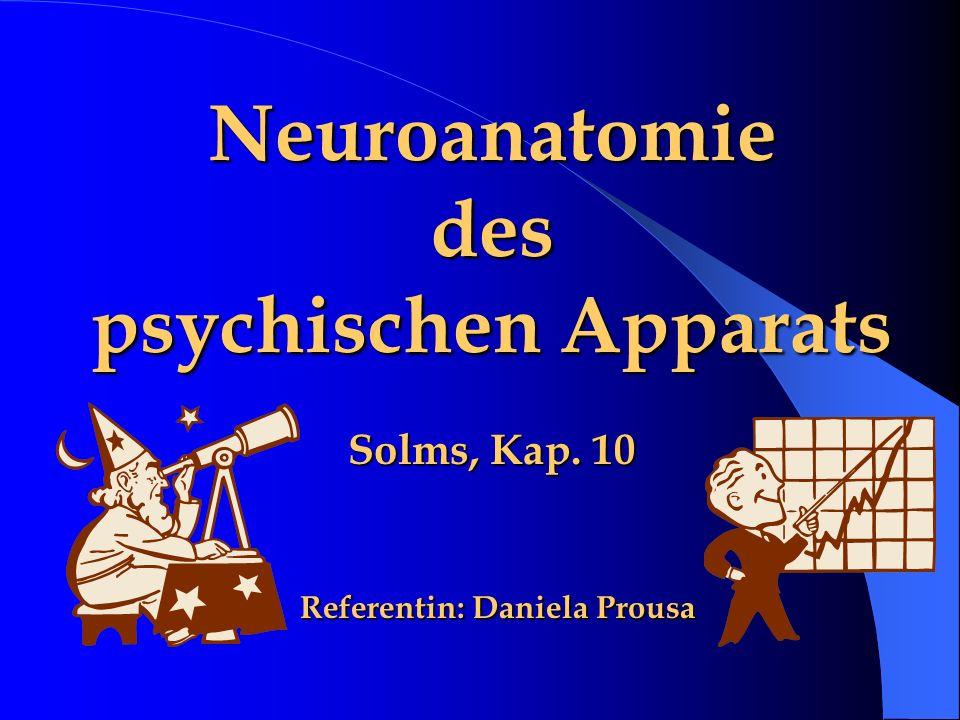 Neuroanatomie des psychischen Apparats Solms, Kap