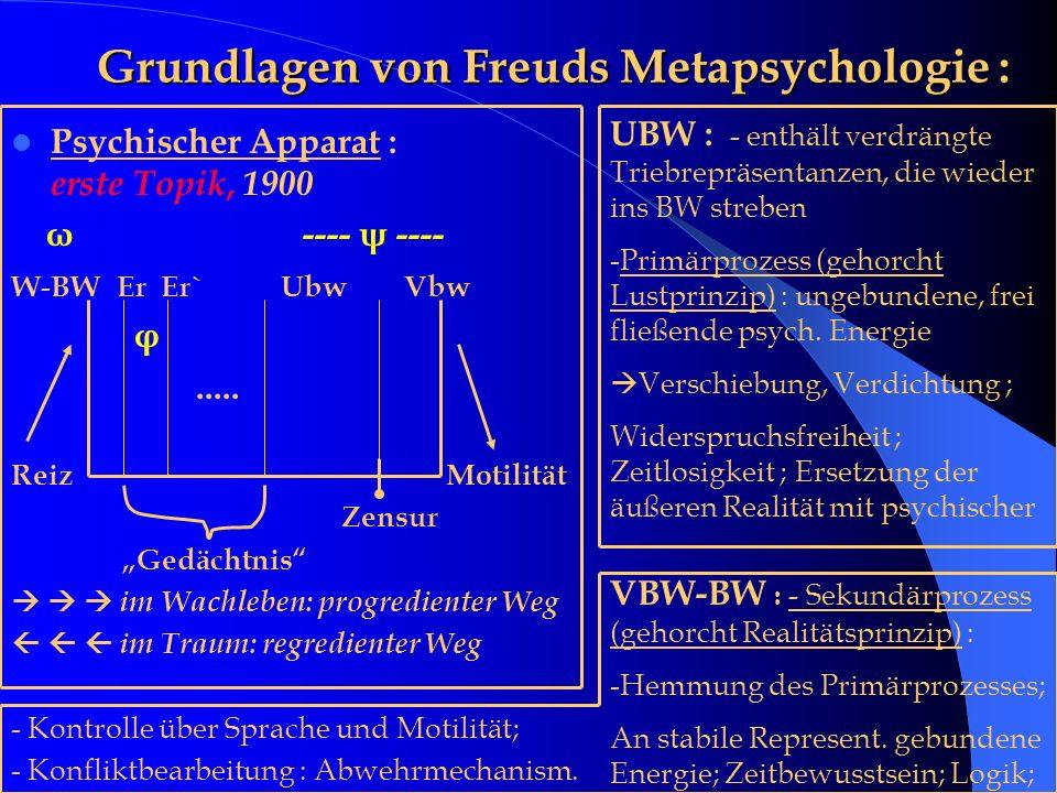 Grundlagen von Freuds Metapsychologie :