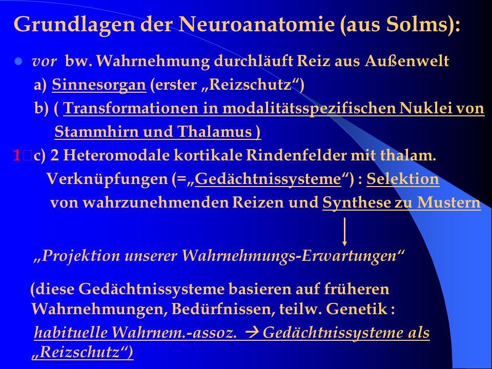 Grundlagen der Neuroanatomie (aus Solms):