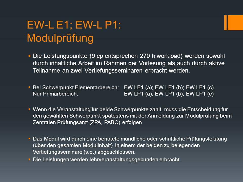 EW-L E1; EW-L P1: Modulprüfung