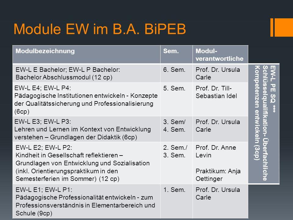 Module EW im B.A. BiPEB Modulbezeichnung Sem. Modul-verantwortliche