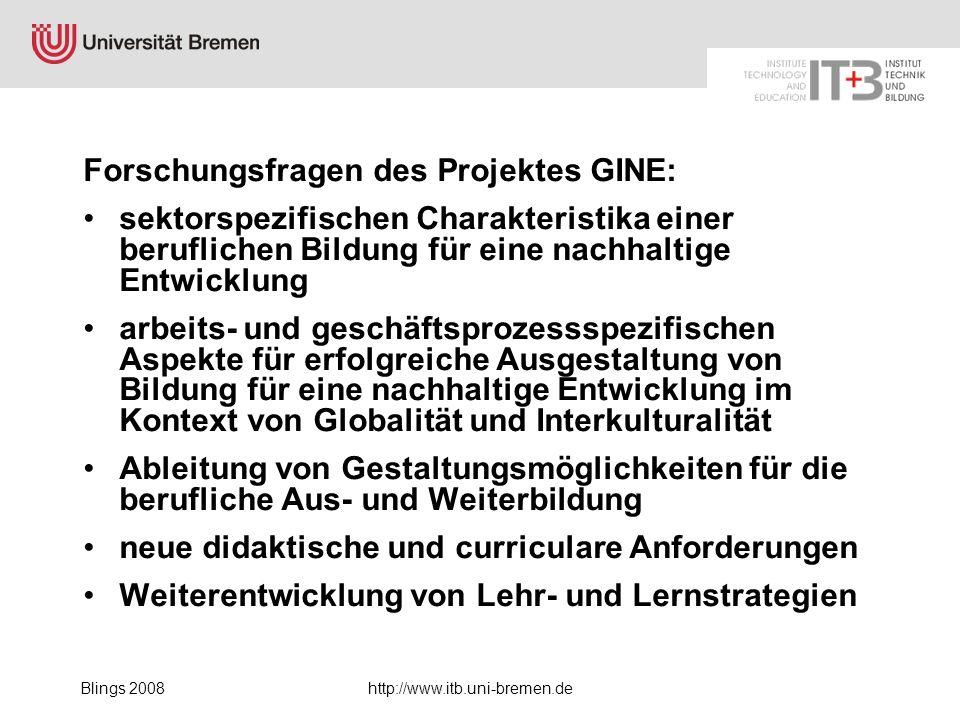 Forschungsfragen des Projektes GINE: