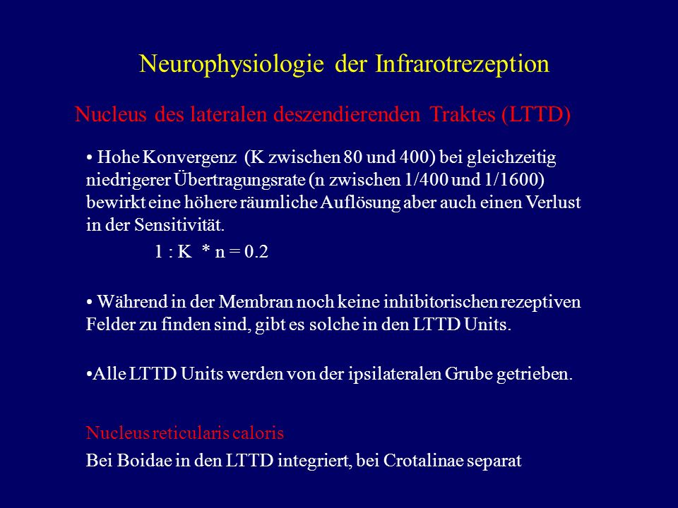 Neurophysiologie der Infrarotrezeption