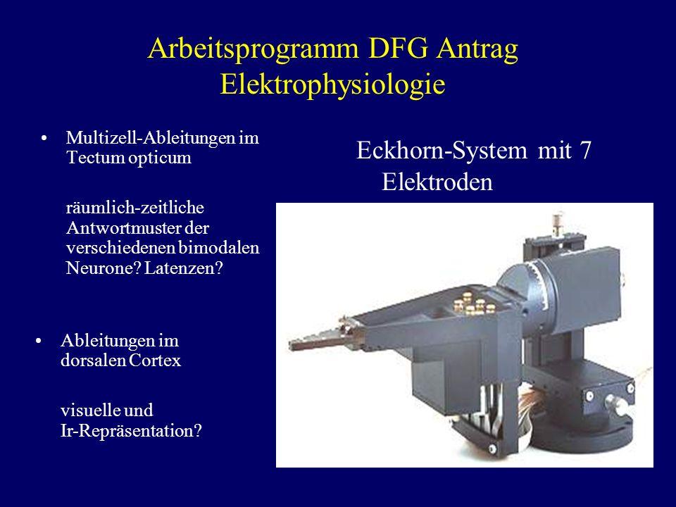 Arbeitsprogramm DFG Antrag Elektrophysiologie