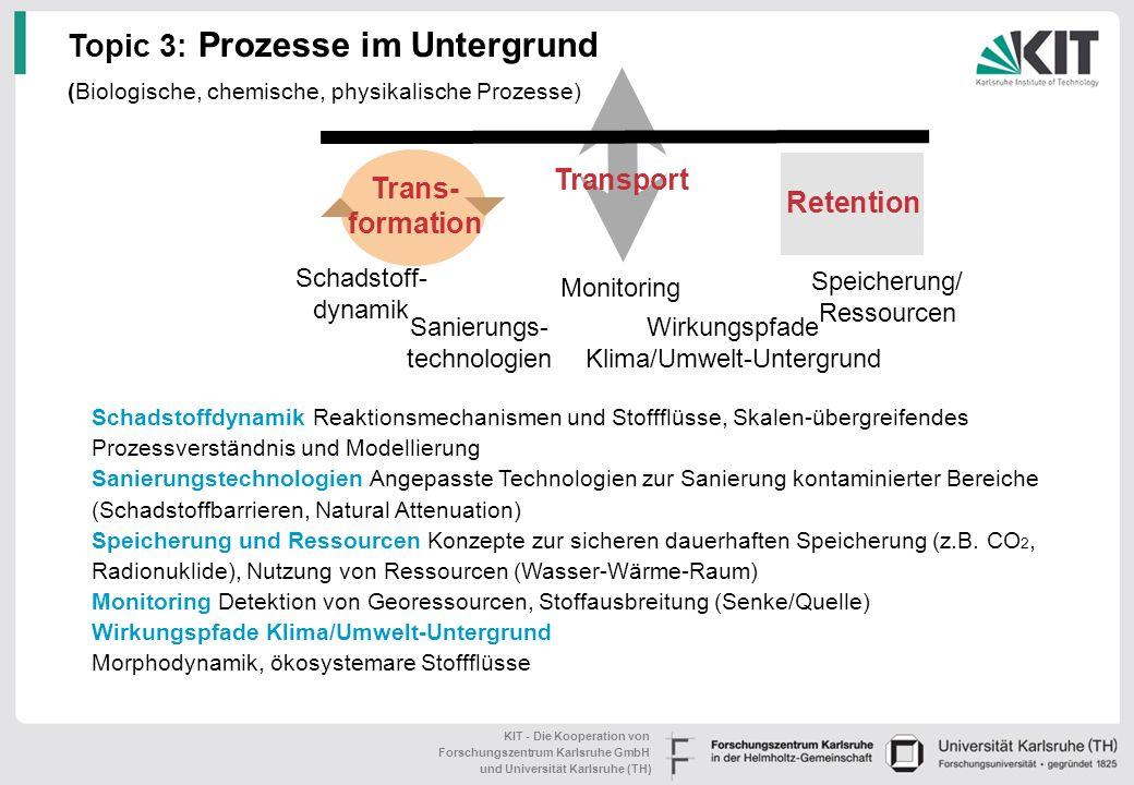 Topic 3: Prozesse im Untergrund (Biologische, chemische, physikalische Prozesse)