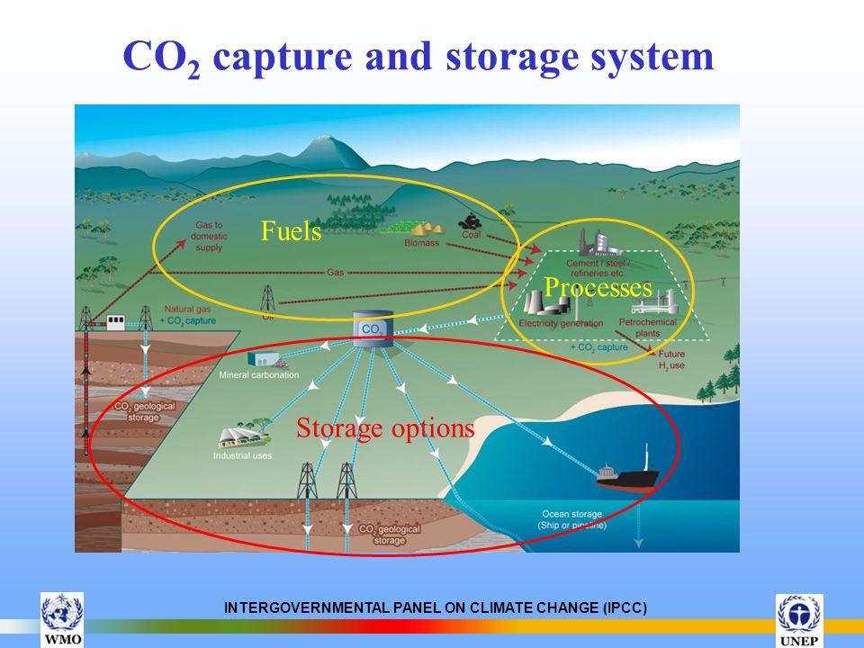 CO2 capture and storage system