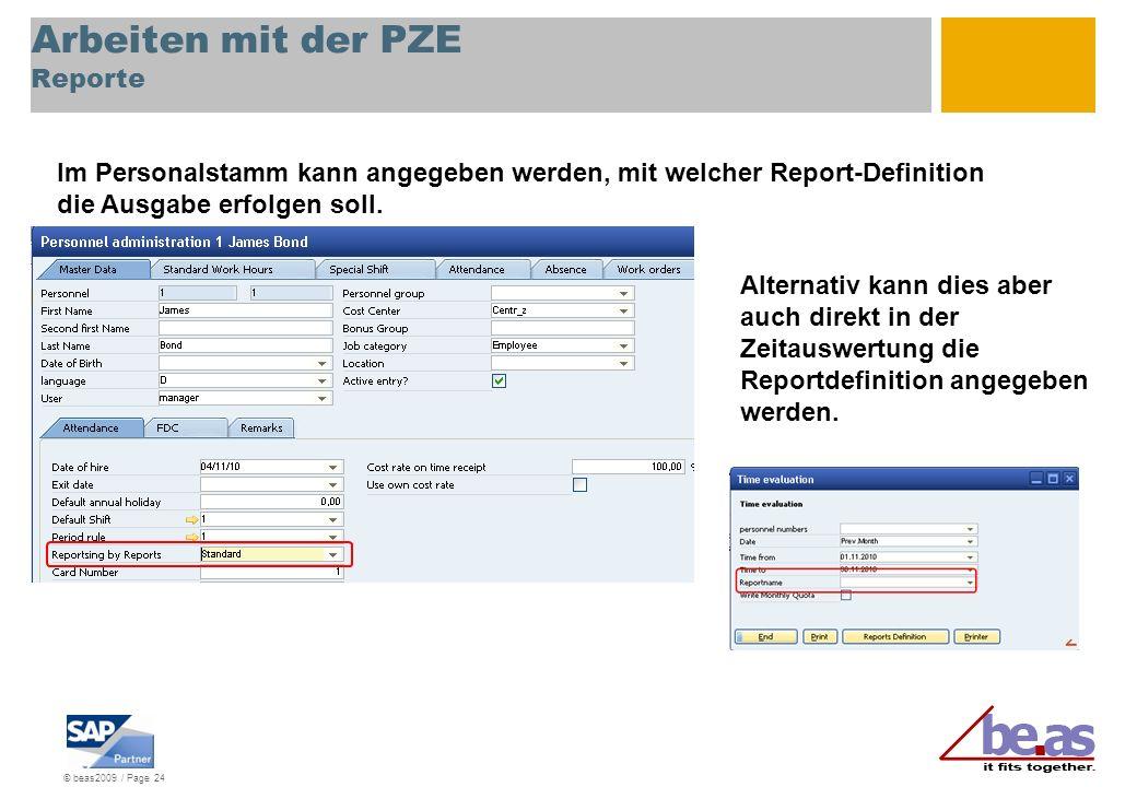 Arbeiten mit der PZE Reporte