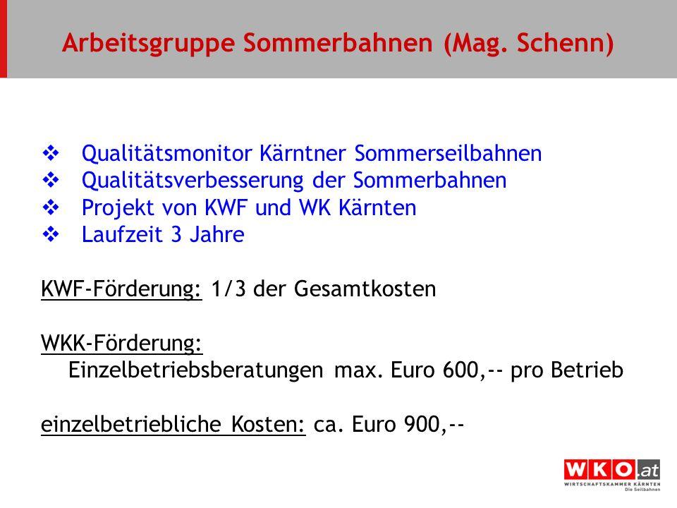 Arbeitsgruppe Sommerbahnen (Mag. Schenn)