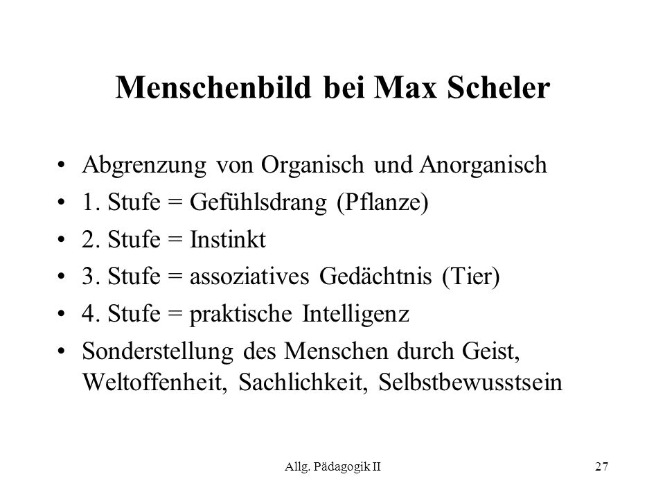Menschenbild bei Max Scheler