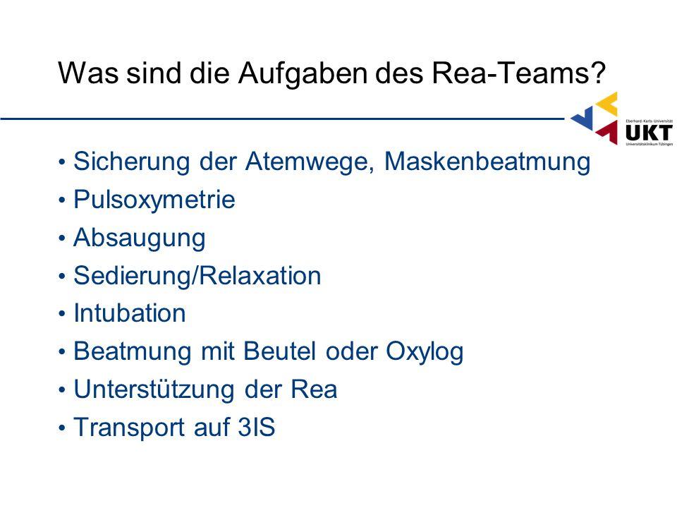 Was sind die Aufgaben des Rea-Teams
